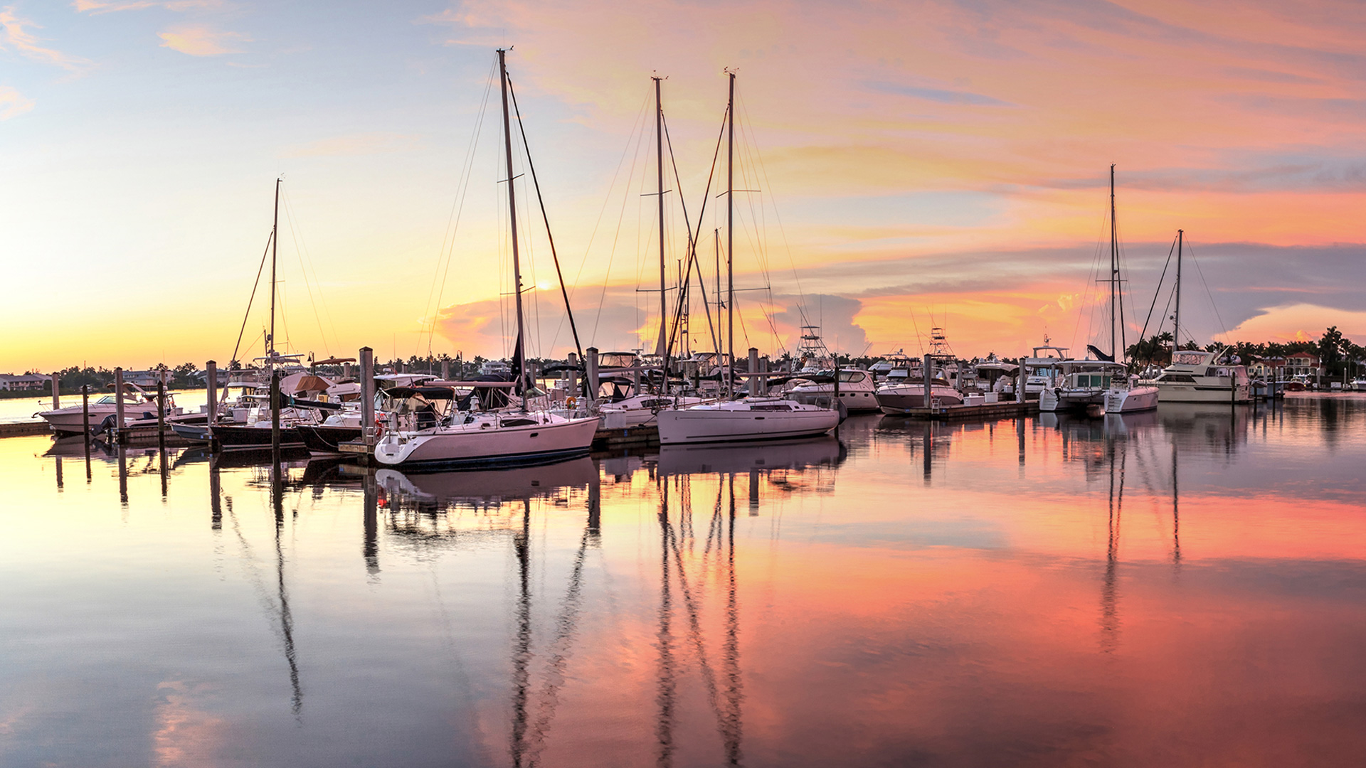 St. Petersburg Florida sail boats